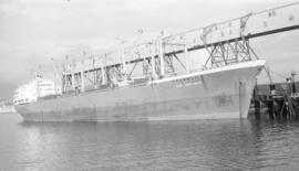 M.S. Carl Trautwein [at dock]