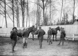 Men and horses, some mounted, some in uniform