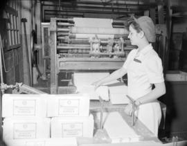 [Woman packaging paper towels at Westminster Paper]