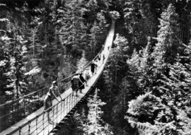 Suspension bridge, Capilano Canyon, height 200 ft., length 450 ft.