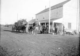 [People gathered around B.C. Express Company Cariboo Royal Mail stagecoach, stopped near W. Boyd,...