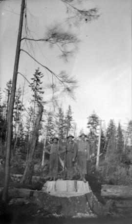 [Three men on stump after felling a tree in Kitsilano forest]