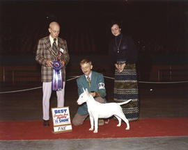 Best Canadian Bred Puppy in Show award being presented at 1975 P.N.E. All-Breed Dog Show [Bull Te...