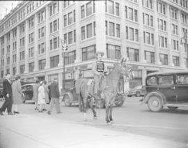 "[Woman on a horse at Granville Street and Georgia promoting ""Trail Street"" at the Stran..."