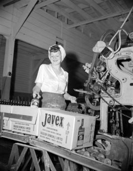 [Woman loading boxes with Javex at Dalglish Chemicals Ltd.