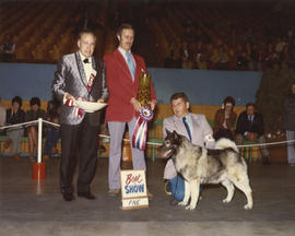 Best in Show award being presented at 1975 P.N.E. All-Breed Dog Show [Norwegian Elkhound]
