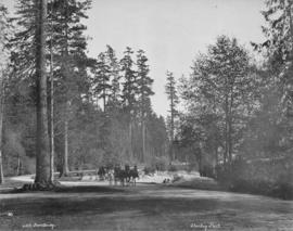 [Open horse drawn carriage, travelling along scenic road in] Stanley Park