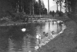 [The first duck pond in the park]