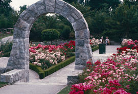 Rose Garden : arch at n[orth] end