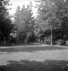 [View of a garden on Bowen Island]