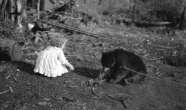 [Theresa Quiney with bear cub at 1820 Waterloo Street]