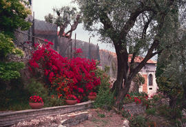 Gardens - Europe : Italy, Riviera, summer place to Hanburg family