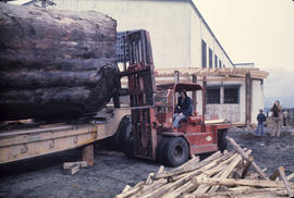 Logs for Lumberman's Arch - 2 [14 of 18]