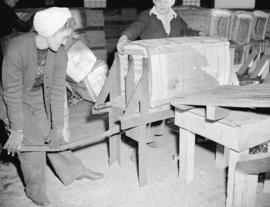 [Two women packing peat moss at] B.C. Peat plant