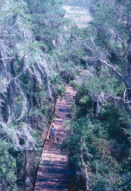 Environment : environmental protection, wilderness walkways