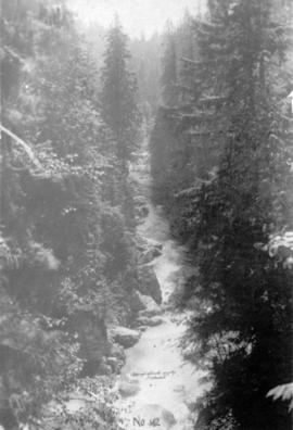 [Capilano Canyon]