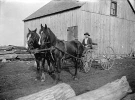 [Man seated on horse drawn carriage in front of barn]