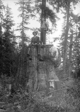[Two men on large stump - seated man is Stuart Thomson]