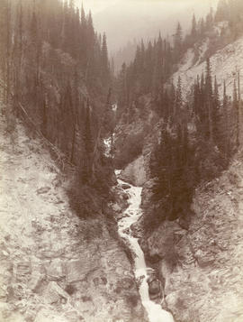 Stoney Creek [and falls in the Selkirk Mountains]