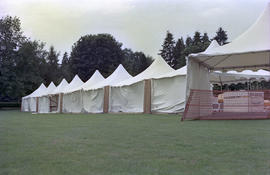 Row of white event tents