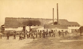 [Employees standing in front of the Hastings Sawmill building]