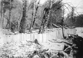 [Wood fence to prevent erosion near the Capilano intake]