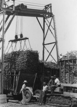 Moving sugarcane harvest with a crane