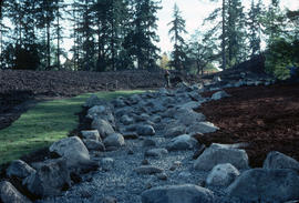 Landscape - historical : newly laid stream bed (VanDusen)