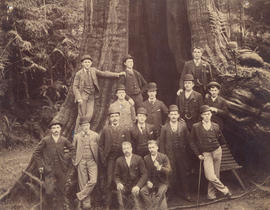 [A group of unidentified men in front of the Hollow Tree]