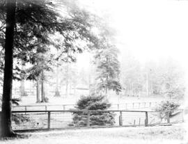 [View of] Stanley Park Pavilion from the duck pond