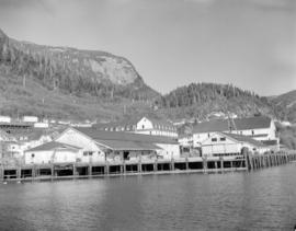 [View of docks at] Pacific Mills