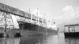 M.S. Derby [at dock]