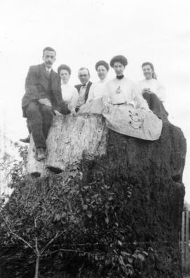 [An unidentified group sitting on a large moss-covered stump]