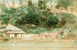 [View of a building on the river surrounded by trees]