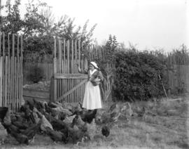 [Woman feeding chickens]