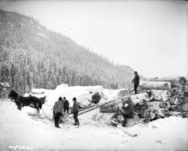 [Men stacking logs by rolling them up a ramp using chains, pulleys and horses]