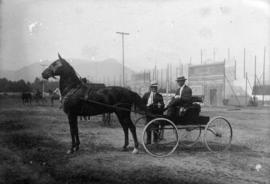 Dr. Colin Henderson driving horse and buggy