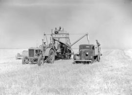 [Harvesting scene showing men, equipment and vehicles]