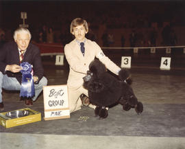 Best in Group [Non-Sporting Group: Miniatrue Poodle] award being presented at 1974 P.N.E. All-Bre...