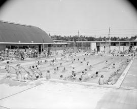 Diving city of vancouver archives for City of vancouver swimming pools