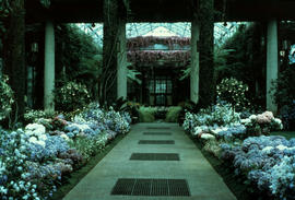 Gardens - United States : conservatory center walk, Longwood Gardens, Kennett Square, Pennsylvania