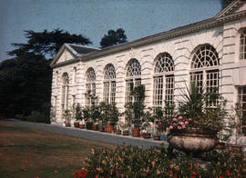 Gardens - United Kingdom - Royal Botanical Garden - Kew : Orangery