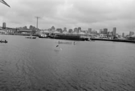 Dragon boats in False Creek