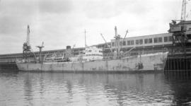 "S.S. Sevilla [at dock, at Pier ""B""]"