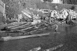 Habitat Forum #21 - log salvage crew [35 of 38]