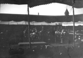 [View of horse and rider performance from stands of tent]