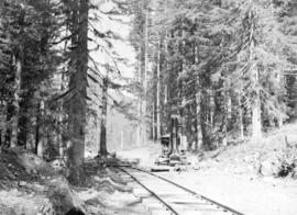 [Rail line and logging equipment, Youbou, B.C.]