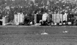 Fishing boats in Burrard Inlet coming in with their catch