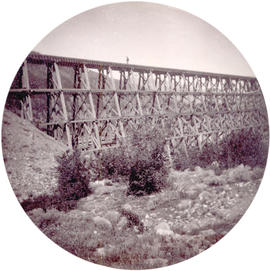 [An unidentified trestle bridge]