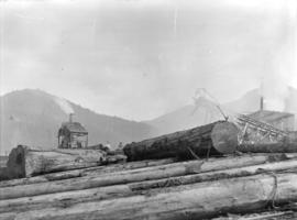[Logs and machinery at Fraser Valley Sawmill]